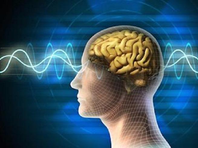 Звуки мозга