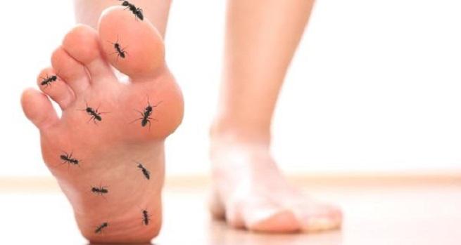 Словно муравьи бегают по ногам