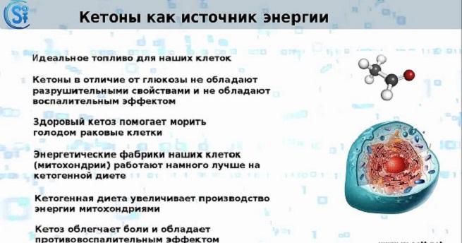 Общие сведения о кетозе